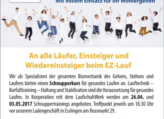 EZ-Lauf_Anzeige-Nr-1-1-zum-Auftrag-Nr-276946